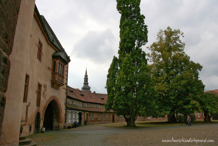 Buedingen Castle Courtyard with Tall Tree